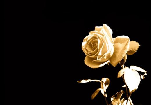 Untukmu, Agar Jangan Berduka Ketika Sesuatu Luput Darimu