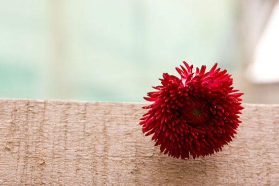 Apa Arti Junub yang Mengharuskan Mandi?