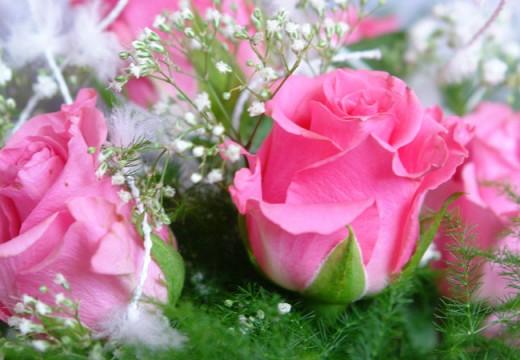 Pesan Nabi: Menikahlah dengan Wanita yang Penyayang