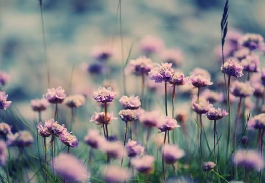 Berbahagialah Jika Kau Sakit