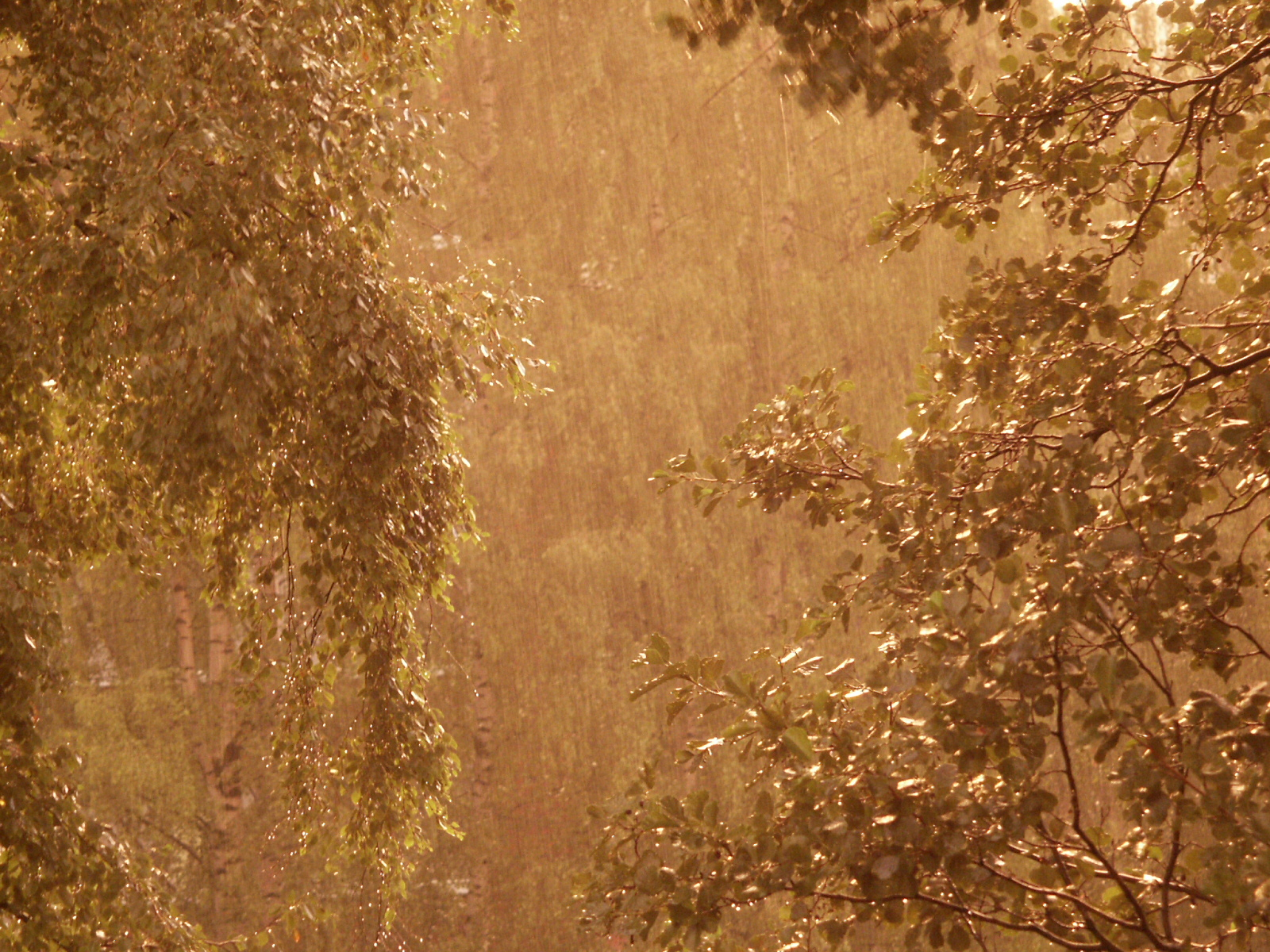 doa minta hujan