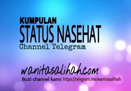 Kumpulan Status Nasehat  Channel Telegram Wanitasalihah.Com