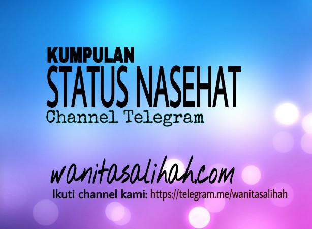 Kumpulan Status Nasehat Channel Telegram Wanitasalihahcom